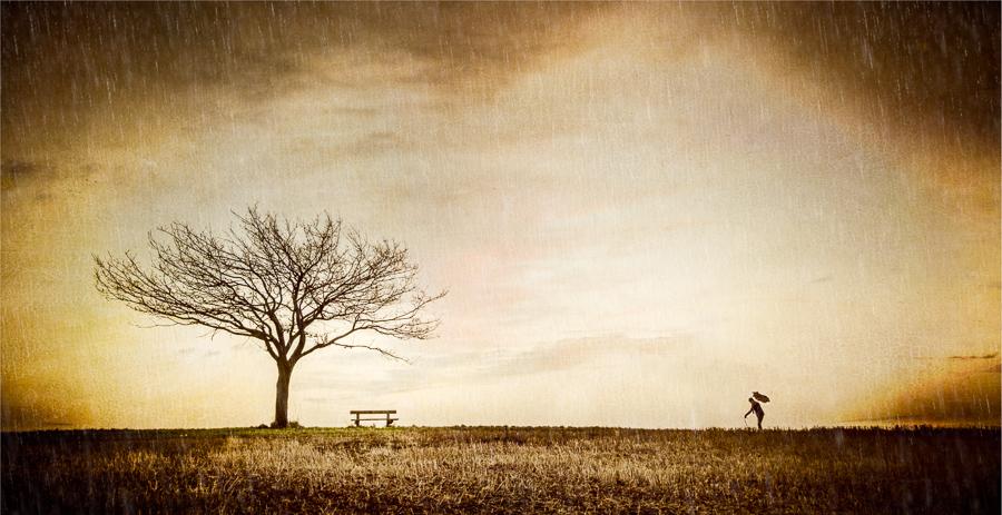 Winters-Seat.jpg